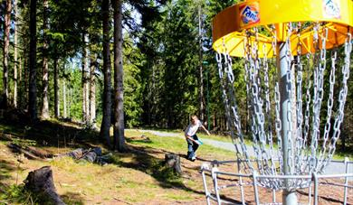 Frisbee golf at the Skien fritidspark