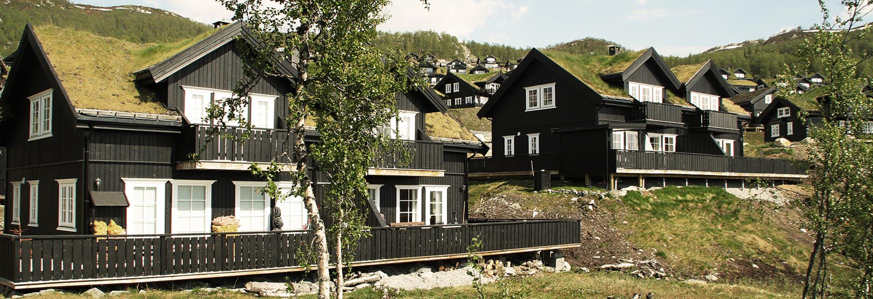 Cottages at Rauland in Telemark