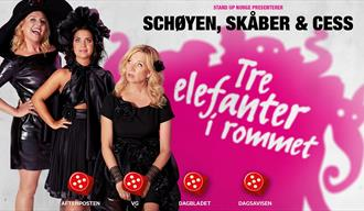 Schøyen, Skåber & Cess: Tre elefanter i rommet Product Details Descriptions Media Classifications Openings Tickets Channels Links CRM More